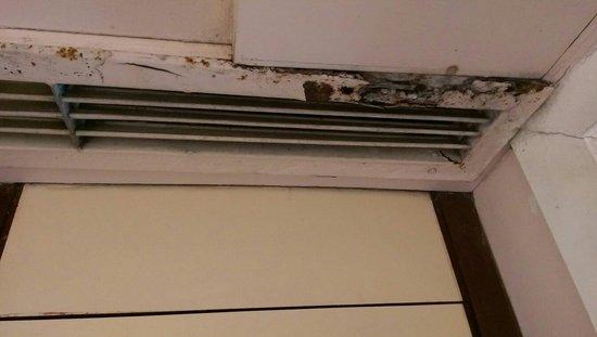 Hotel Vrishali Executive: ROTTEN AC GRILLS