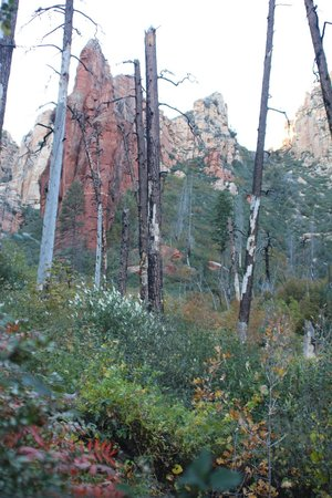 جونيباين ريزورت: Sterling Pass Trail...near Junipine