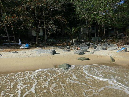 Nai Harn Beach: SAMa Beach