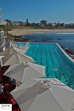 Y Electric Bondi Beach Nuevo! Encuentra y reserva el hotel ideal en TripAdvisor y consigue ...