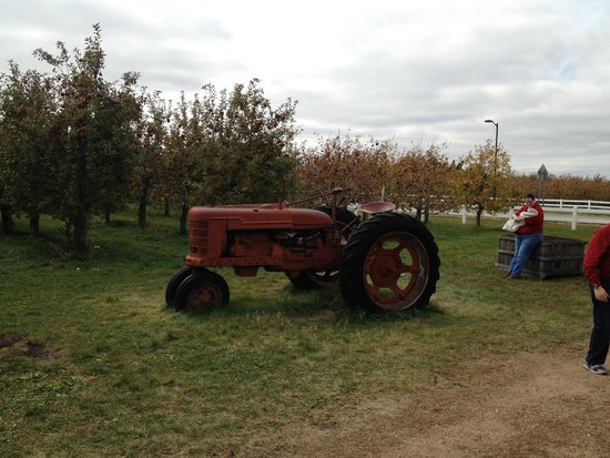 Belle Plaine, MN: Tractor in the apple orchard
