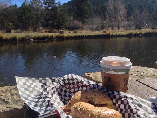 Coffee on the Rocks: Beautiful morning