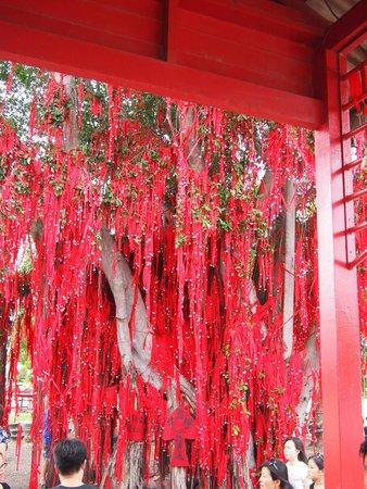 Redang Beach: Wishing Tree in Red