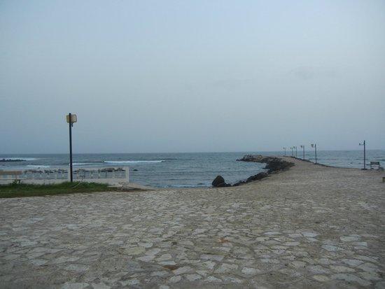 King Fahd Palace: see view