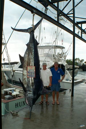 Ihu nui kona sportfishing kailua kona all you need to for Kona sport fishing