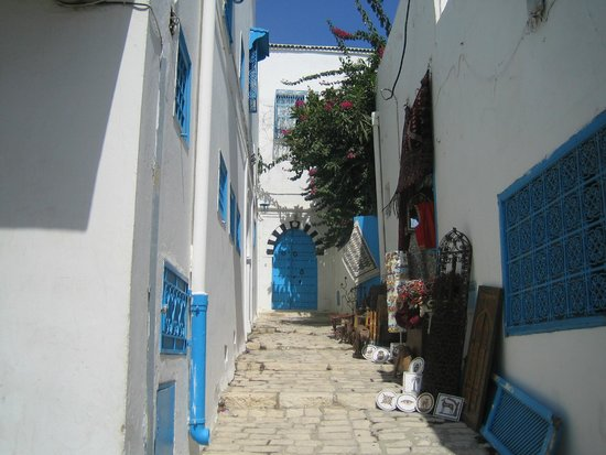 Fen tres et fer forg picture of sidi bou said tunis for Fer forge fenetre