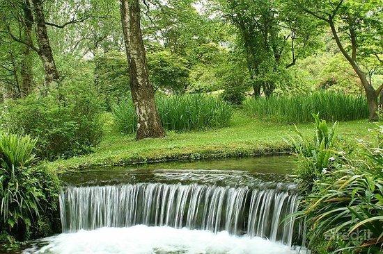 Il bosco incantato foto di giardino di ninfa monumento naturale cisterna di latina - I giardini di alice latina ...