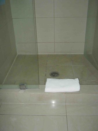 Wyndham Garden Celaya: Una alberca dentro del baño