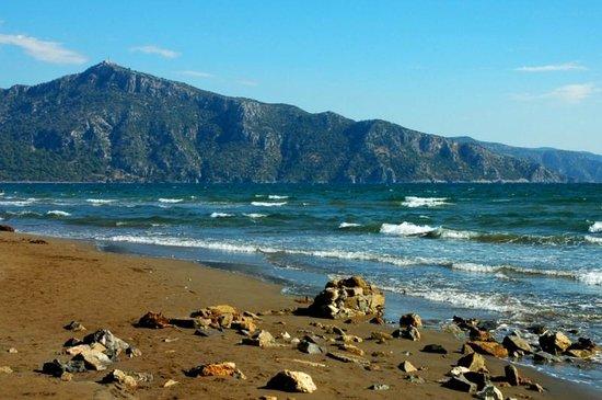 iztuzu plajı ve Ege denizi - Picture of Iztuzu Beach ...