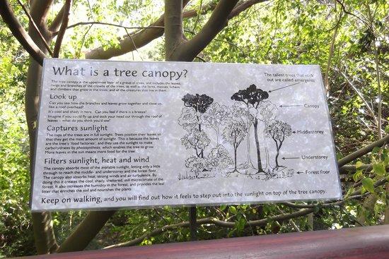 Kirstenbosch National Botanical Garden: One Of The Information Boards
