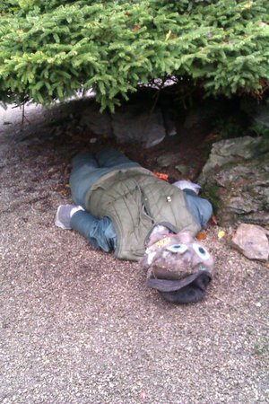 Kendal, UK: Sizergh ex-scarecrow