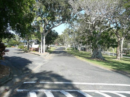 Sawtell Beach Holiday Park : Well presented grounds
