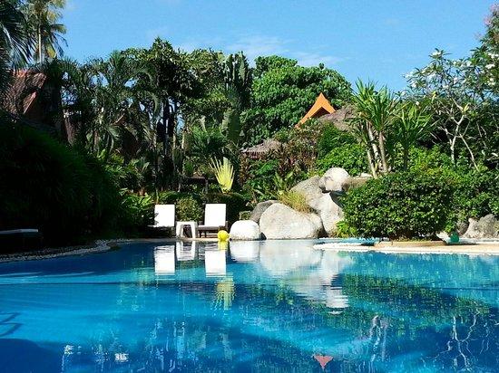 Palm Garden Resort Phuket : Okt 2014 Dirk Möller