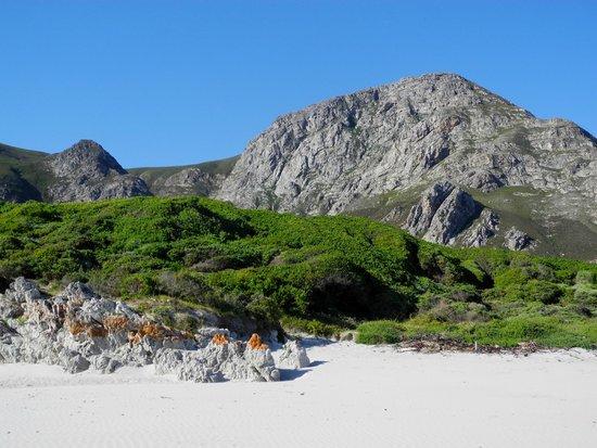 Berge hinter Grotto Beach
