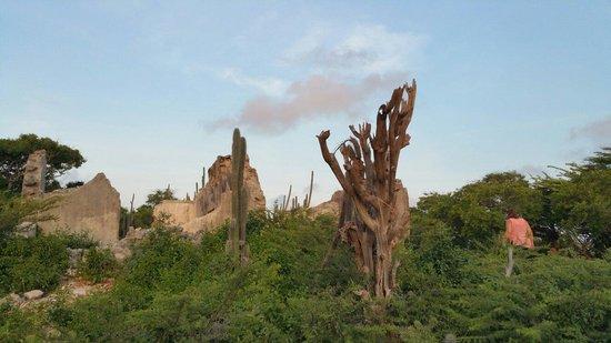 Savonet Museum : Zonsopgang op de zuidroute plantage ruine
