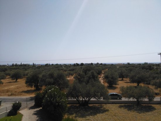 Villa Olive Grove: View from the balcony