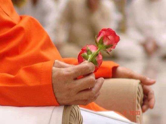 Puttaparthi Sairam Temple Sundaram: The divine hands