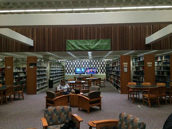 Stetson University: Biblioteca