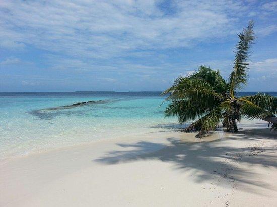 Asdu Sun Island: spiaggia camera 115