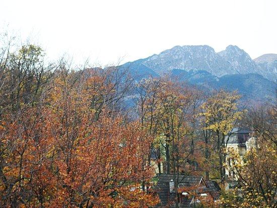 Kolejarz : view from balcony