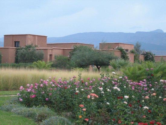 Ecolodge Quaryati : vista general zona casitas con habitaciones