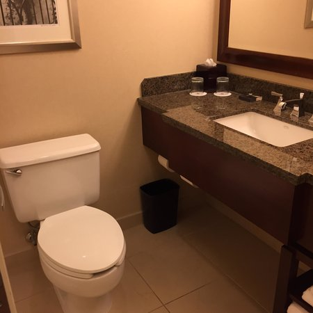 Greensboro-High Point Marriott Airport: Small bathroom but nice finishes