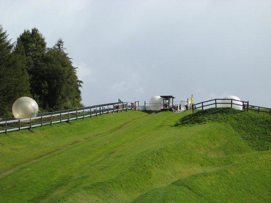Zorb Rotorua: Vista