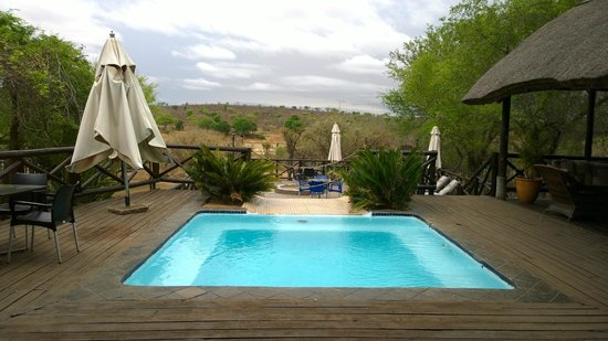 Crocodile Kruger Safari Lodge: Der Pool mit River u. KNP