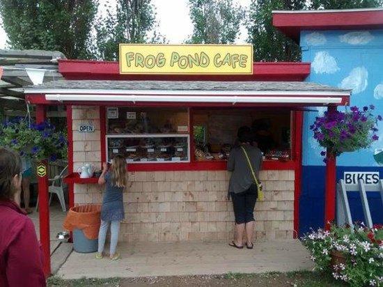 Frog Pond Cafe: after the renovations