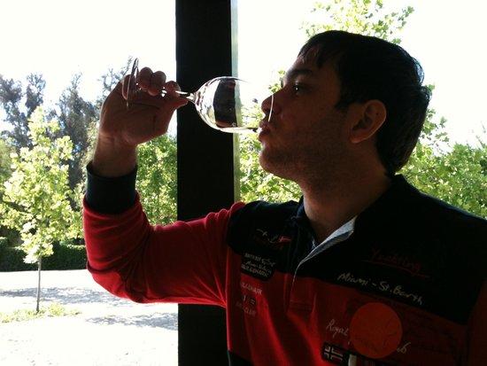 Alma del Plata Buenos Aires Hotel & Apart: vinho no chile