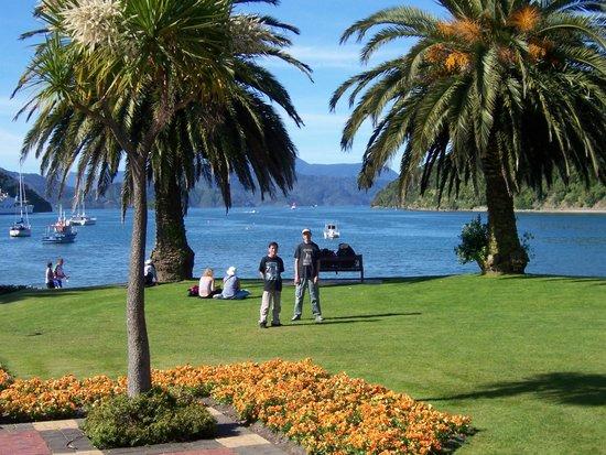Picton Sound : Picton New Zealand