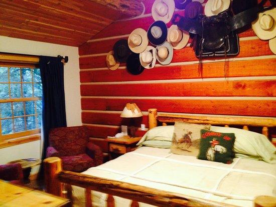 Hidden Moose Lodge: Beautiful themed room.