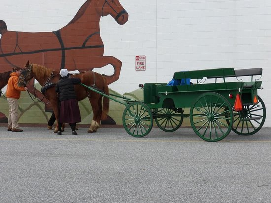 FREE buggy rides on Halloween Day 2014 at New Castle Farmer's Market