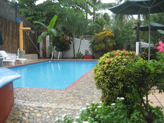 Hotelito Swiss Oasis : The clean and well maitained pool