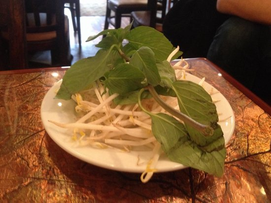Caphe Banh Mi: The Usual  Suspects - sprouts and basil for your PHO