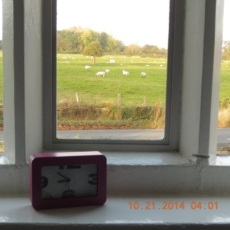 Manor Farm: morning view from the bedroom