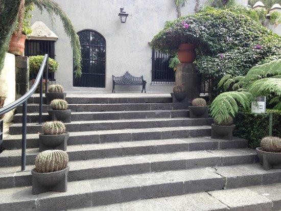Museo Dolores Olmedo Patino: Museu