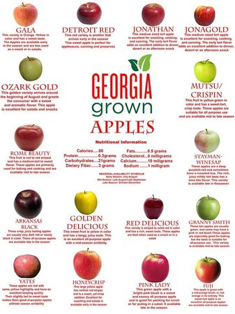 Georgia Apples as designed by Stephen Aaron - Picture of