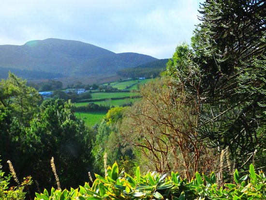 Enniskeen Country House Hotel: View of Mourne Mountains within Enniskeen Hotel grounds