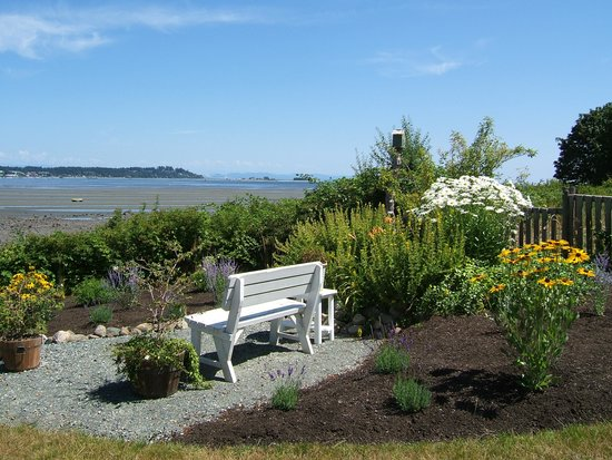 Beach House Bed and Breakfast: Garden Bench