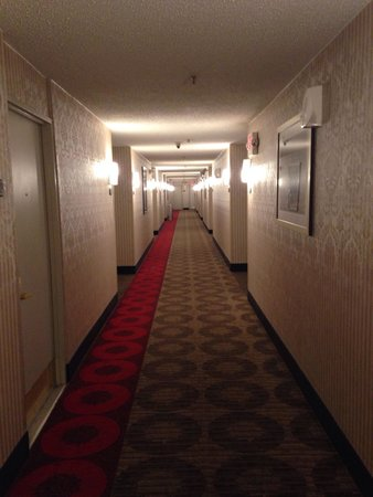 Ramada East Orange: Hallway looks like something in the shining.