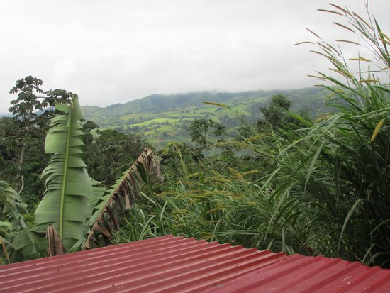 Toad Hall Hotel Arenal: view from room