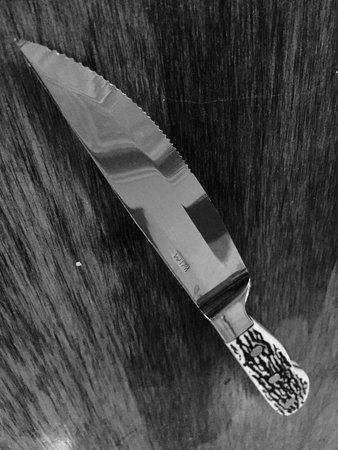 Brazill's On Main : The actual steak knife for my flank steak. I am not sure this weapon is even legal in NYS