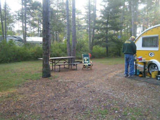 Kohler-Andrae State Park : Site 88