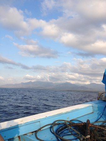 Menjangan Island: Perjalanan dari/ke Pulau Menjangan