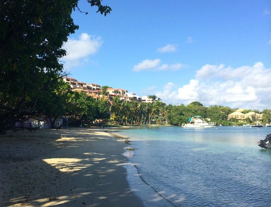 Grande Bay Resort: View from the beach