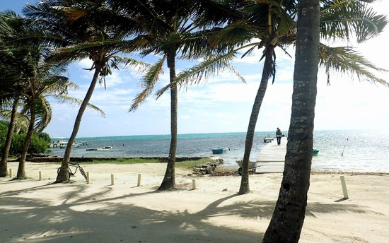 Caye Casa: View from our porch