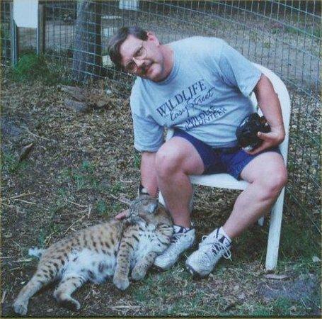 Big Cat Rescue: Our host bob cat