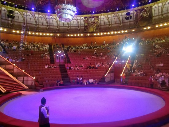 Great Moscow State Circus on Vernadskogo: Inside the circus waiting for the show to start