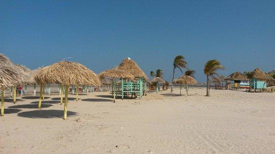 Praia do Pesqueiro : Lindíssima!